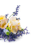 Bouquet of yellow and purple flowers Stock Photography