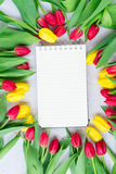 Bouquet of yellow, purple and red tulips Royalty Free Stock Image