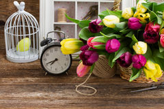 Bouquet of  yellow and purple  tulip flowers Stock Photos