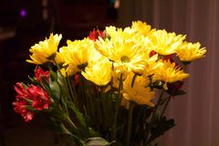A bouquet of yellow and red flowers in a home interior. Closeup of a red and yellow flowers bouquet in a lighted home interior royalty free stock photo