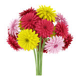 Bouquet of yellow red and pink flowers isolated on white Royalty Free Stock Photos