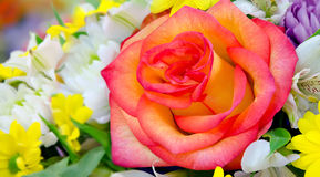 Bouquet with yellow-red rose in the center. Stock Image