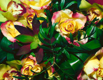 Bouquet of yellow with red roses with greenery from above Stock Photos