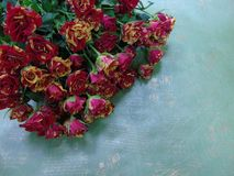 Bouquet of yellow with red roses on paper with inscriptions Stock Image