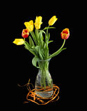 Bouquet of yellow and red tulips Royalty Free Stock Photo