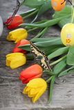 Bouquet of yellow and red tulips Stock Image