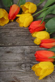 Bouquet of yellow and red tulips Royalty Free Stock Photos
