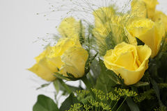 Bouquet with Yellow roses Stock Photos
