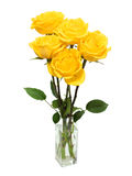 Bouquet of yellow roses. Isolated on white Royalty Free Stock Photo