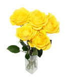 Bouquet of yellow roses Stock Photos