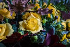 Bouquet of yellow roses in dew drops stock images