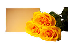 Bouquet of yellow roses with empty card on white. Selective focus Royalty Free Stock Photography