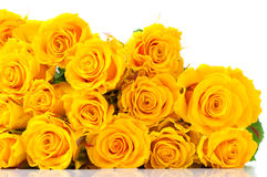 Bouquet of yellow roses isolated Royalty Free Stock Photography