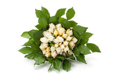 Bouquet of yellow roses Royalty Free Stock Image