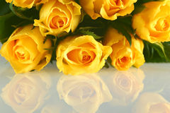 Bouquet of Yellow Roses with reflection. Red Rose with petals isolated on white royalty free stock photos