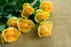 A bouquet of yellow roses on the table stock photo