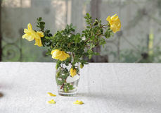 A bouquet of yellow roses. In a transparent glass Royalty Free Stock Photography
