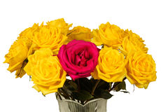 Bouquet of yellow roses in a vase isolated Stock Image