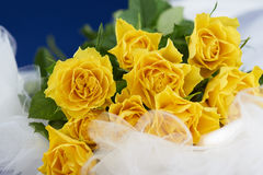 Bouquet of yellow roses on white dress. Bouquet of beautiful yellow roses on white dress Stock Photos