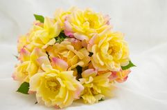 Bouquet of yellow roses Stock Image