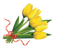 Bouquet of yellow tulips Stock Photo