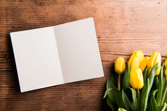Bouquet of yellow tulips and empty greeting card Royalty Free Stock Images