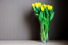 A bouquet of yellow tulips in a glass vase Stock Images