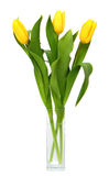 Bouquet of yellow tulips in glass vase Royalty Free Stock Image