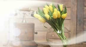 bouquet of yellow tulips in a vase on the floor Stock Images