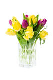 Bouquet of yellow tulips in vase, isolated over white Royalty Free Stock Images