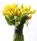 Bouquet of yellow tulips in a vase Stock Photography