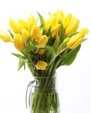 Bouquet of yellow tulips in a vase Royalty Free Stock Photo