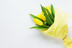 A bouquet of yellow tulips. On a white  background Royalty Free Stock Image