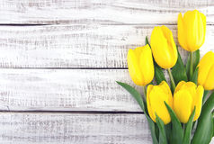 Bouquet of yellow tulips on white rustic wooden background. Spri Royalty Free Stock Images
