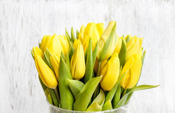 Bouquet of yellow tulips on white wooden background Stock Photos