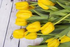 Yellow tulips. Macro shot Stock Photography