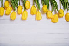 Yellow tulips on wooden background. Royalty Free Stock Photo
