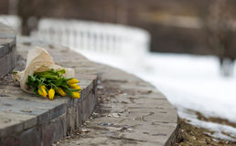 A bouquet of yellow tulips, wrapped in paper, lying on the granite steps Stock Photo
