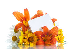 Bouquet of yellow and white daisies Stock Photography