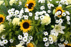 Bouquet of yellow , white  flowers Stock Photos