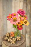 Bouquet of zinnia flowers Stock Images