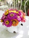 Bouquet of zinnia flowers in teapot. Bangkok, Thailand - Sep 13, 2014 : Bouquet of zinnia flowers in teapot Royalty Free Stock Image