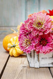 Bouquet of zinnia flowers in wooden box Stock Photo