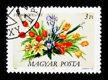 Bouquete kwiaty, seria, około 1989 Zdjęcie Stock