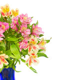 Bouquetof alstroemeria flowers. Bouquet of alstroemeria flowers isolated on white background stock photography