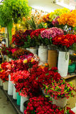 Bouquets of artificial flowers in flower shop. Royalty Free Stock Images