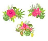 Bouquets avec les fleurs exotiques Photo libre de droits