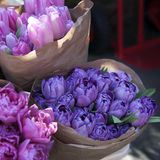 Bouquets of blue tulips  in craft paper Stock Photography