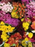 Bouquets of coloured roses. With different colours like yellow, red, pink and white royalty free stock photos