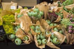 Bouquets de pavot à Stockholm image stock